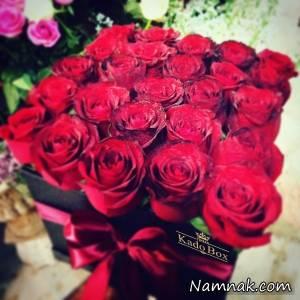 گل ها نماد چه هستند اگر شما هم به گل ها علاقه دارید و میخواهید به کسی گل هدیه دهید بهتر است بدانید هر گل نماد چیست و چه معنی میدهد. هر گل نماد چیست؟ گل علاوه بر سمبل زیبایی، یکی از هدایایی است که نشان دهنده احساسات و عواطف انسان در شرایط مختلف است.هدیه […]